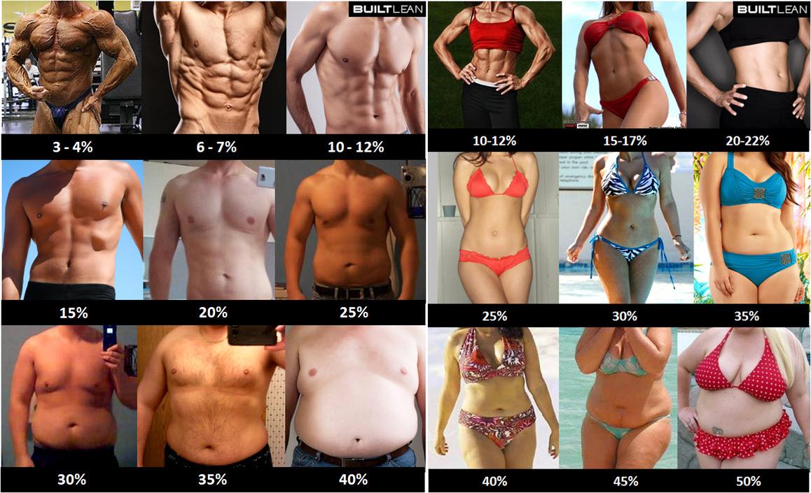 fogyni testzsír százalék nem súly